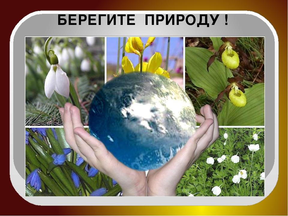 духов, картинки береги природа люби подборка позитивных