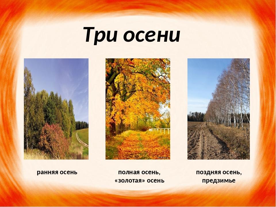 Три осени ранняя осень полная осень, «золотая» осень поздняя осень, предзимье