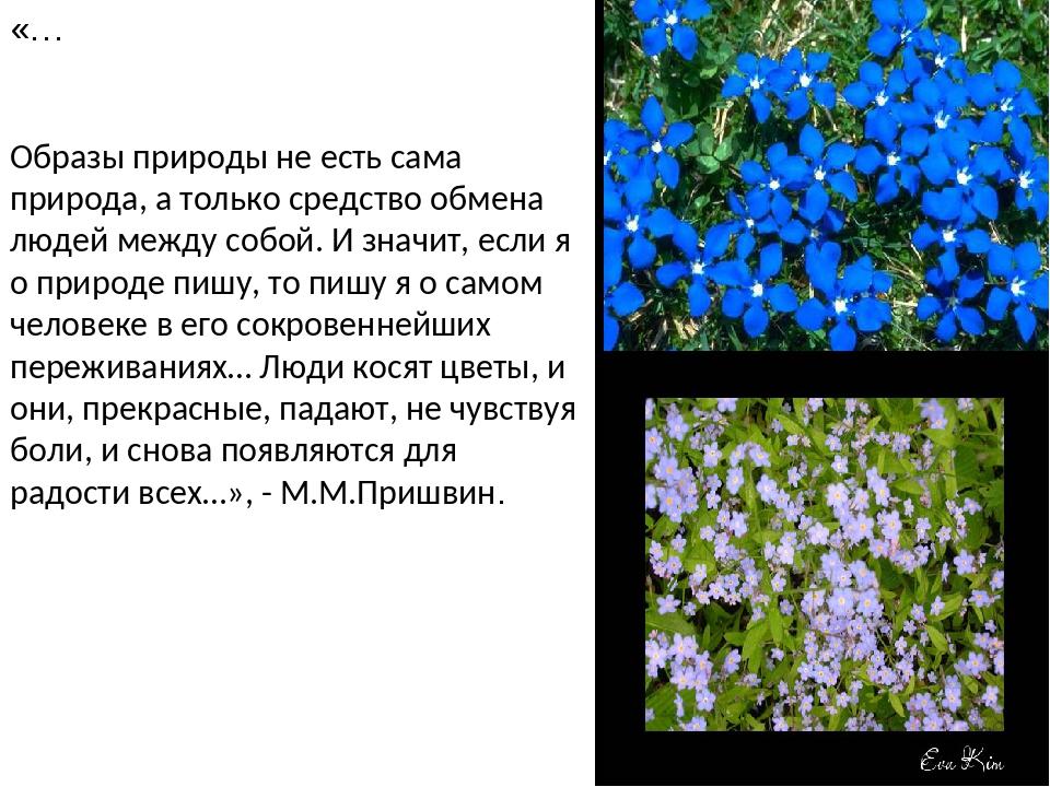 «… Образы природы не есть сама природа, а только средство обмена людей между...