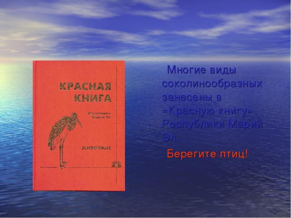 Многие виды соколинообразных занесены в «Красную книгу» Республики Марий Эл....