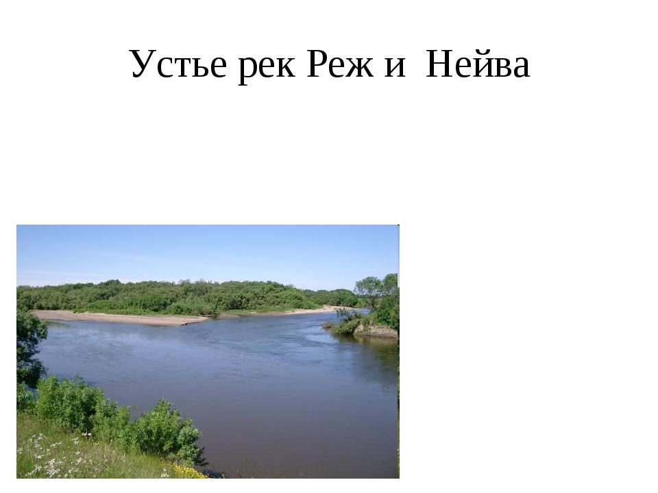Устье рек Реж и Нейва