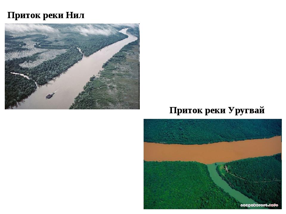 Приток реки Уругвай Приток реки Нил