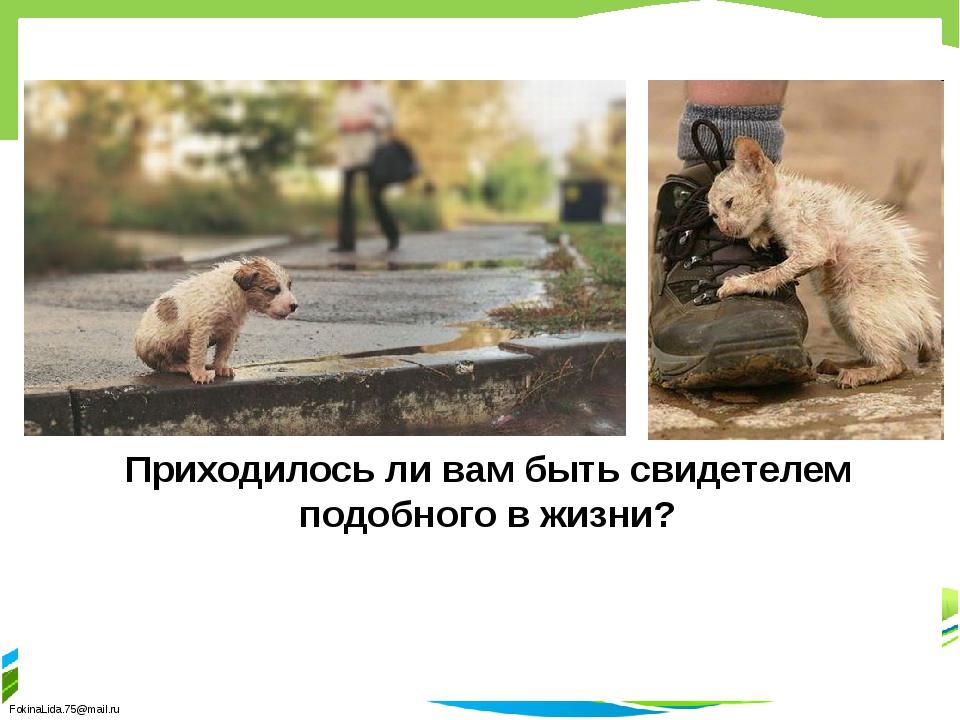 Приходилось ли вам быть свидетелем подобного в жизни? FokinaLida.75@mail.ru