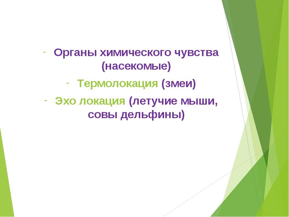партнера? 2012. с.50) Органы химического чувства (насекомые) Термолокация (зм...