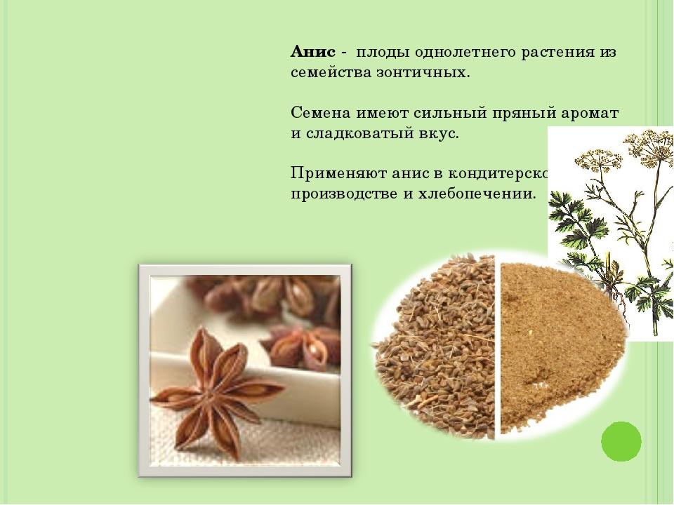 Анис - плоды однолетнего растения из семейства зонтичных. Семена имеют сильны...
