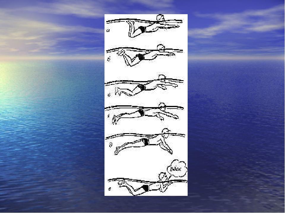 Плавание брассом техника картинки для