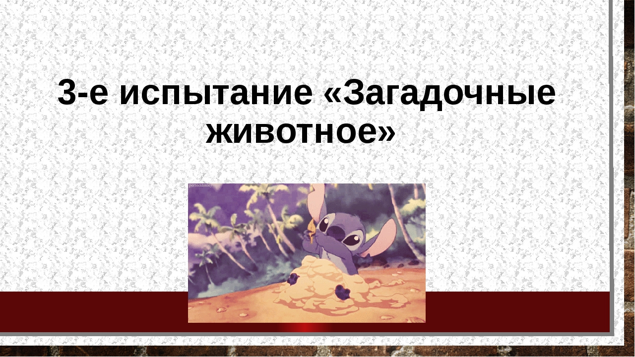 3-е испытание «Загадочные животное»