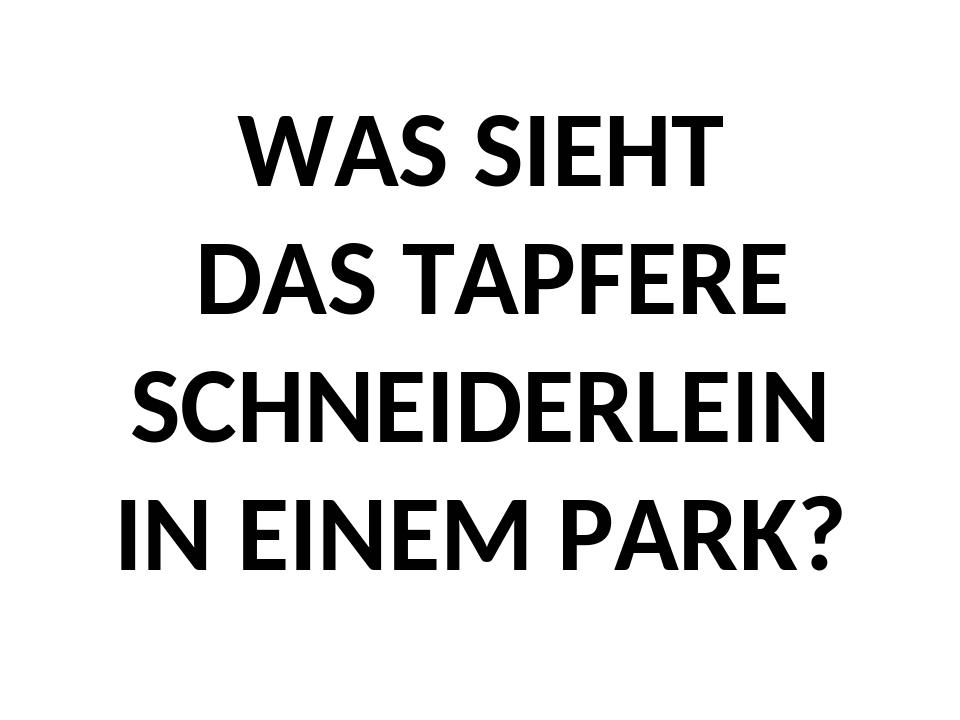 WAS SIEHT DAS TAPFERE SCHNEIDERLEIN IN EINEM PARK?