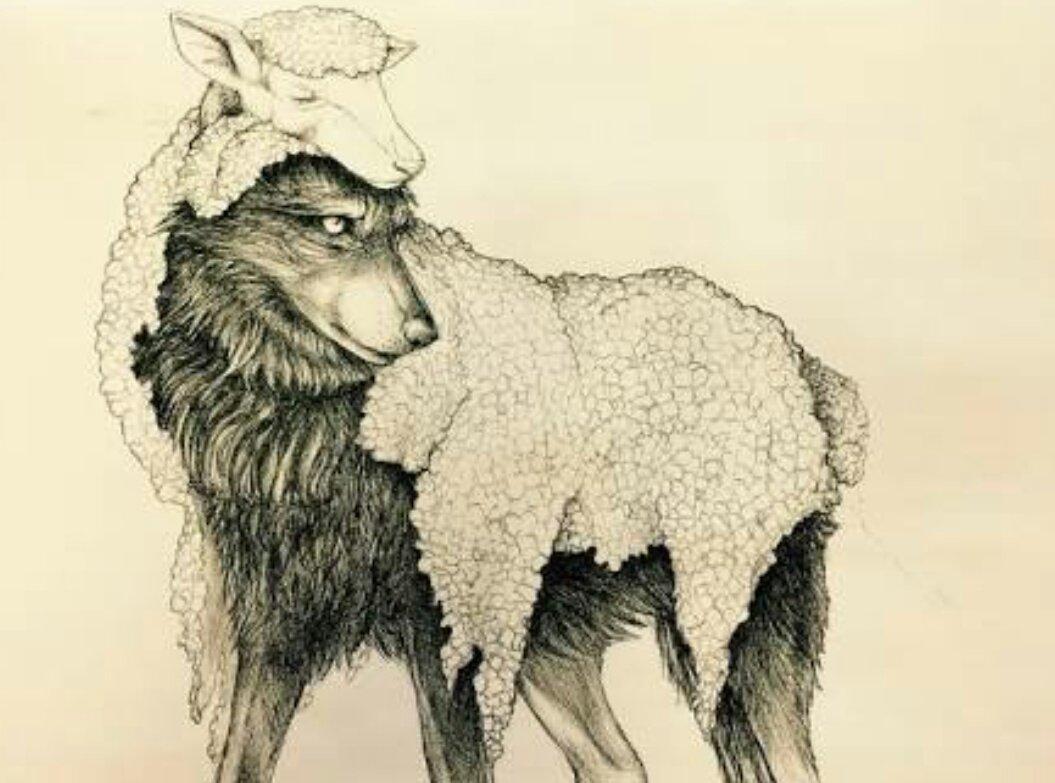 другим картинки волки овечка удобно вокруг