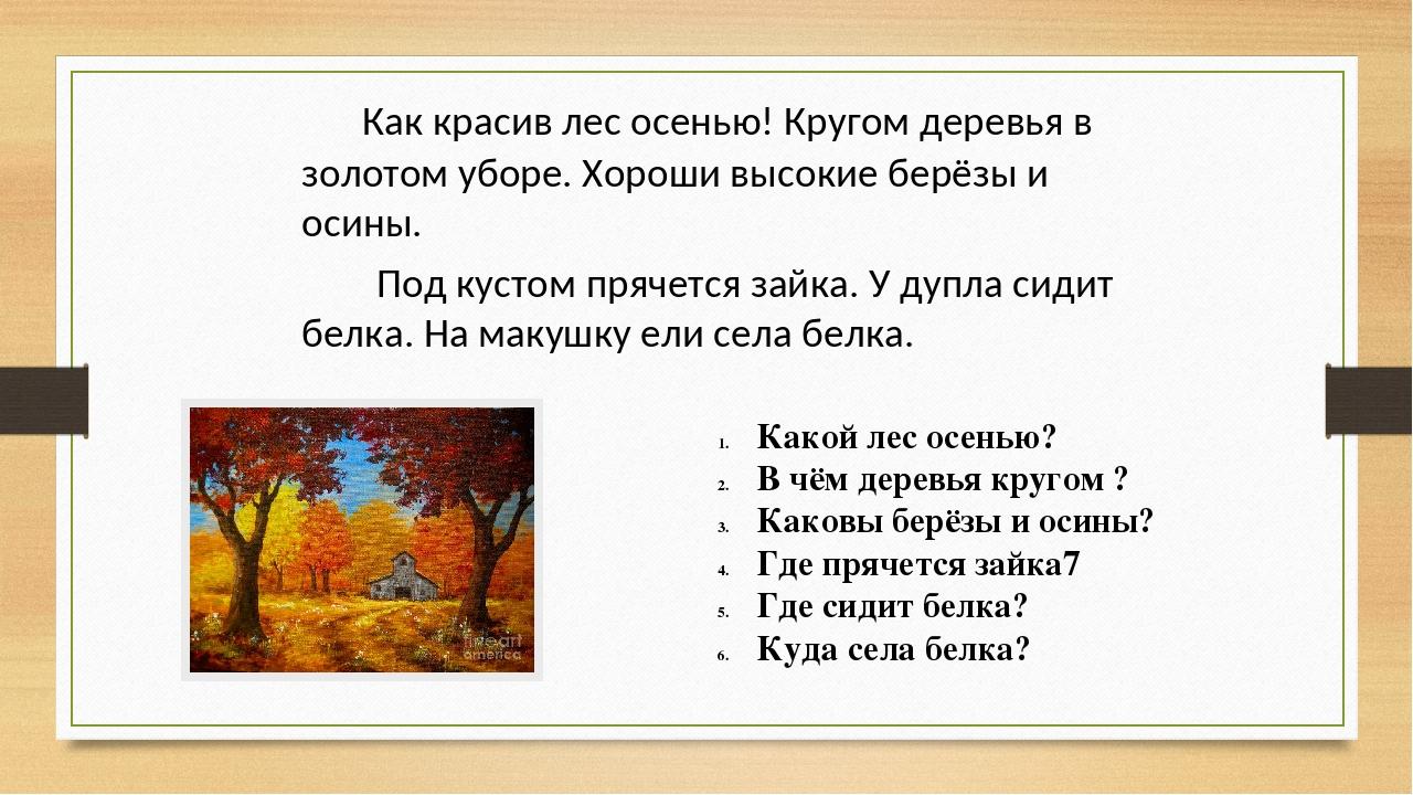 Как красив лес осенью! Кругом деревья в золотом уборе. Хороши высокие берёзы...