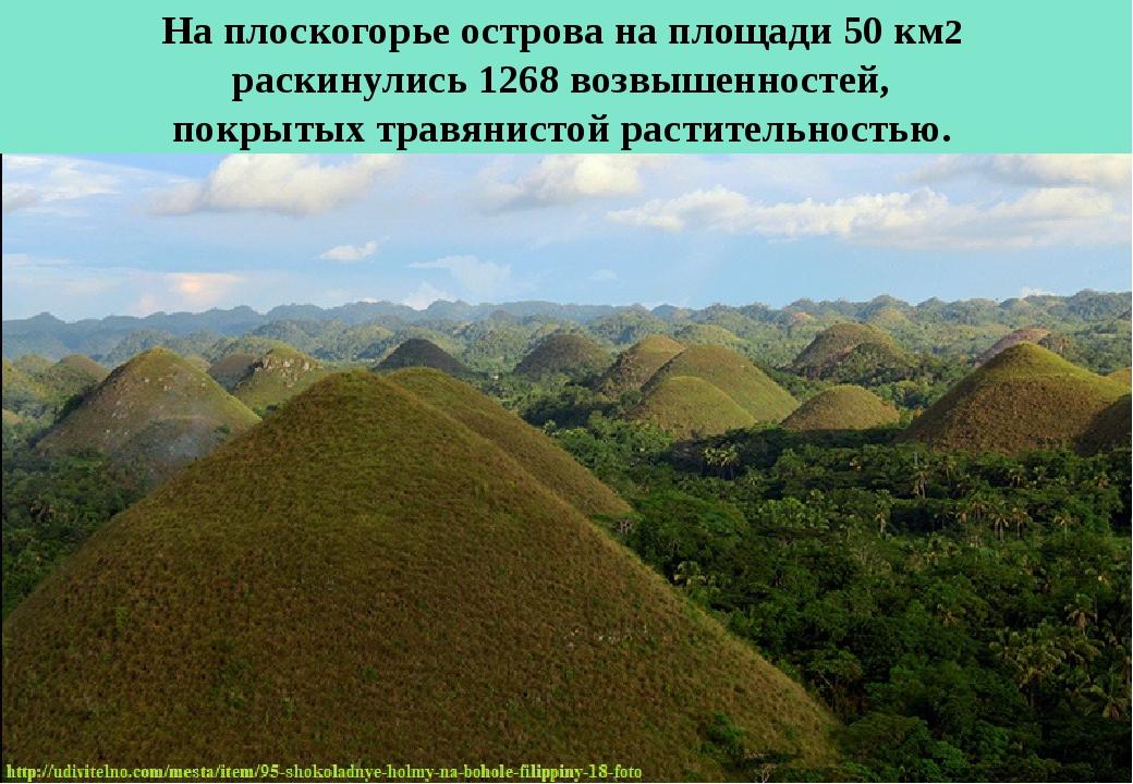 На плоскогорье острова на площади 50 км2 раскинулись 1268 возвышенностей, пок...