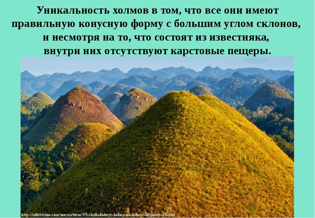 Уникальность холмов в том, что все они имеют правильную конусную форму с боль...