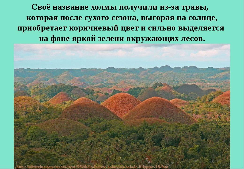 Своё название холмы получили из-за травы, которая после сухого сезона, выгор...