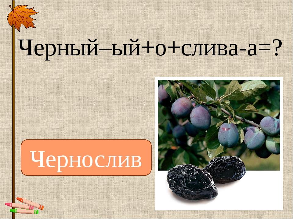 Черный–ый+о+слива-а=? Чернослив