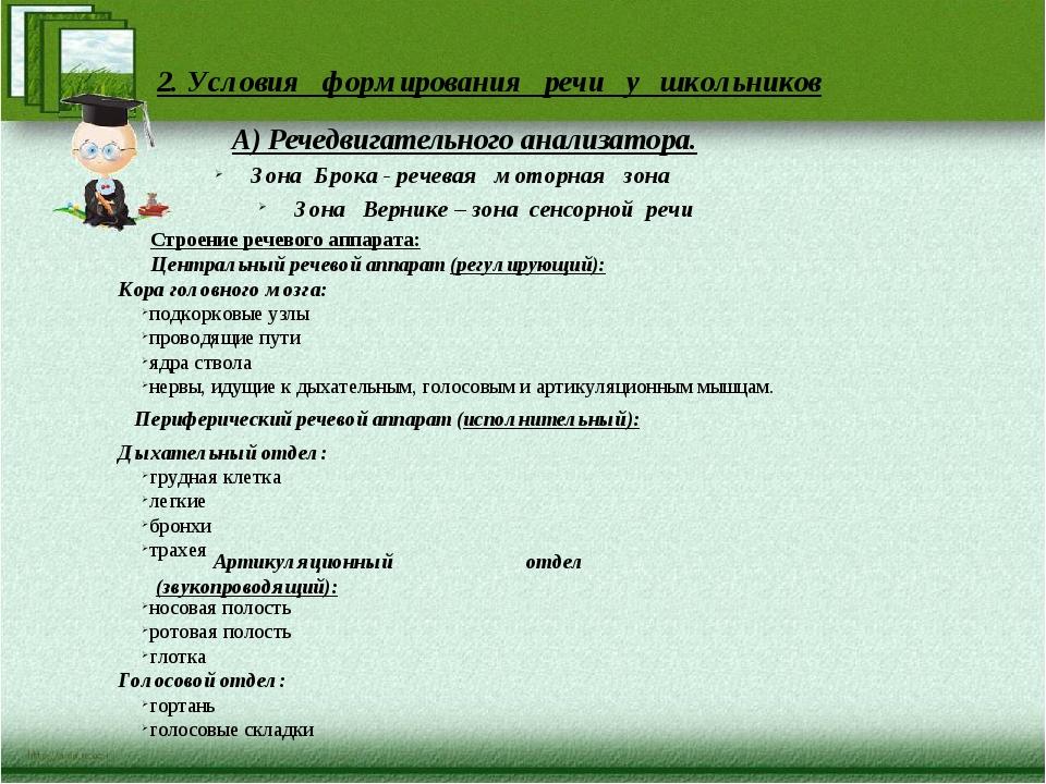 2. Условия формирования речи у школьников А) Речедвигательного анализатора. З...