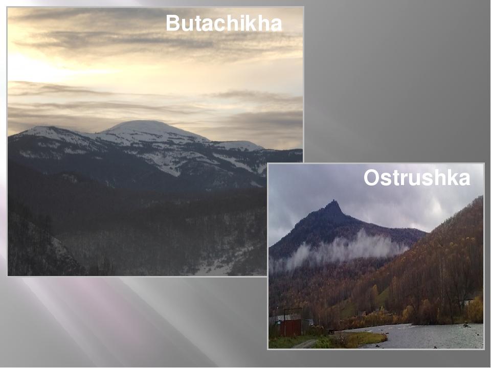 Butachikha Ostrushka