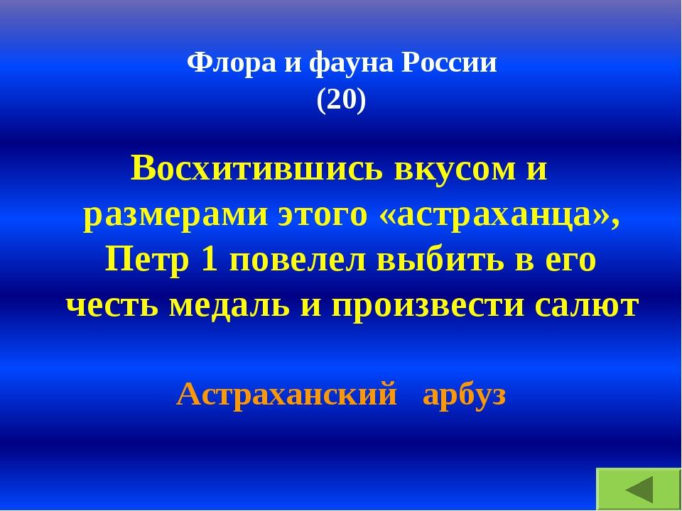 Флора и фауна России (20) Восхитившись вкусом и размерами этого «астраханца»,...