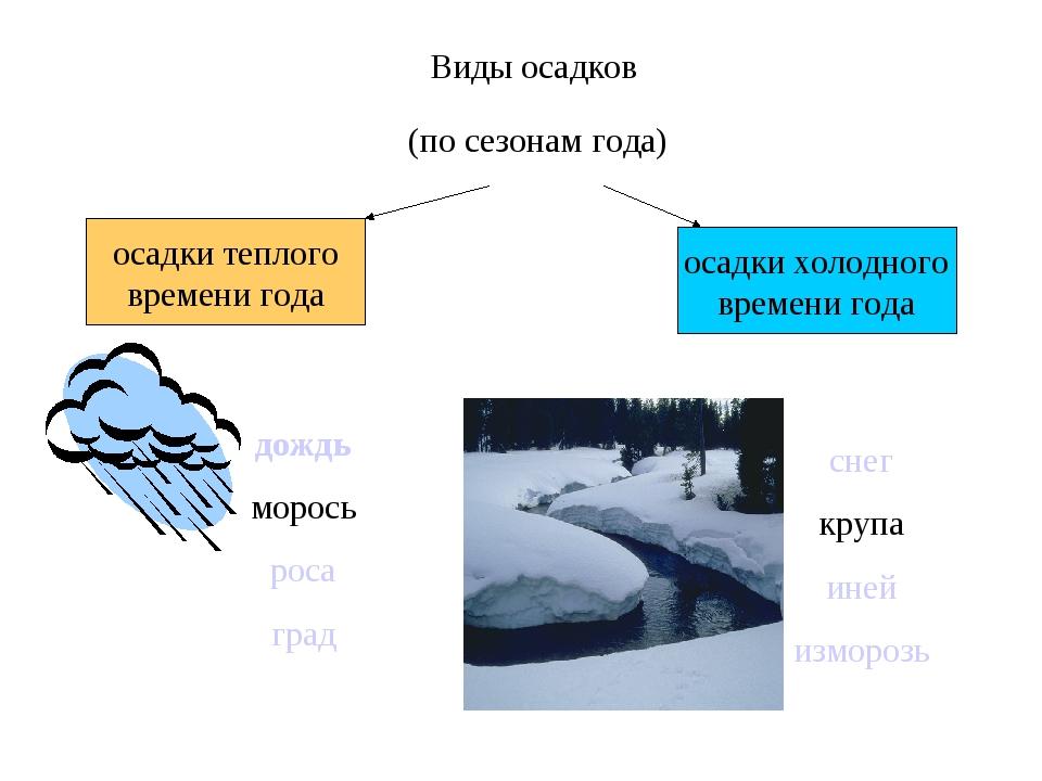 Виды осадков осадки теплого времени года осадки холодного времени года дождь...
