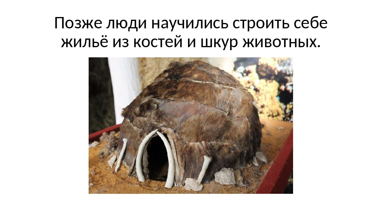Позже люди научились строить себе жильё из костей и шкур животных.