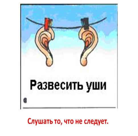 Уши развесил картинка для детей