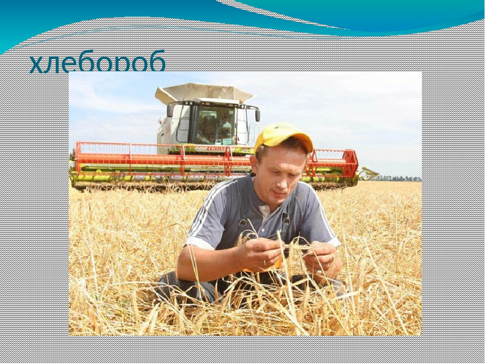 открытка агроному начиная этой субботы