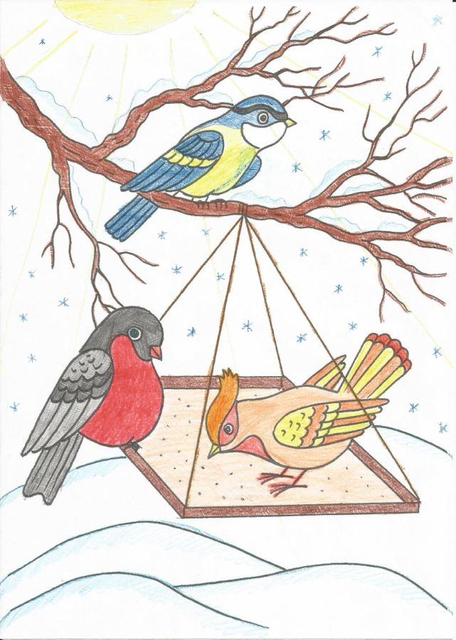 Раскраска кормление птиц зимой