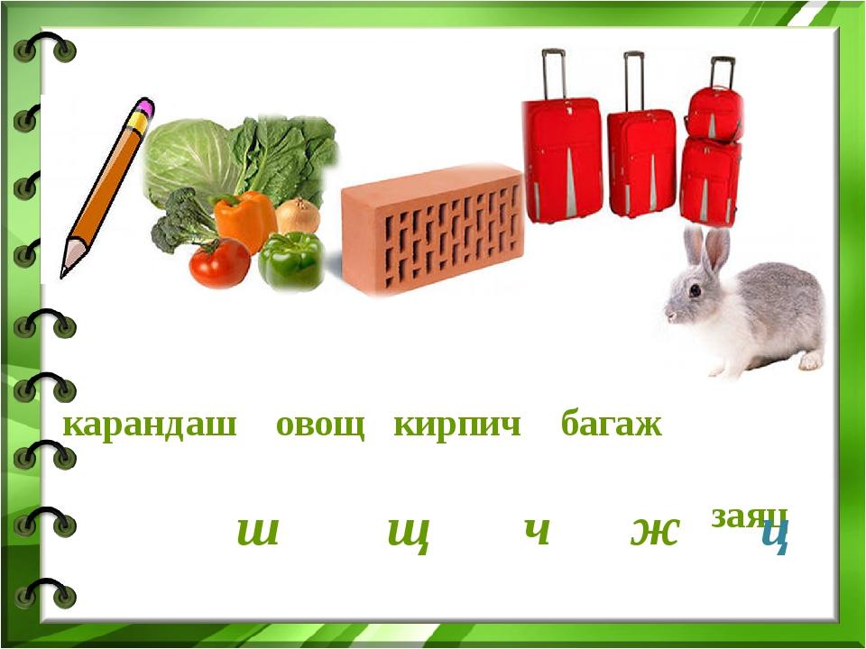 карандаш овощ кирпич багаж заяц ш щ ч ж ц