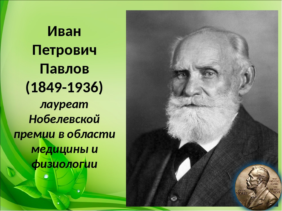 Иван Петрович Павлов (1849-1936) лауреат Нобелевской премии в области медици...