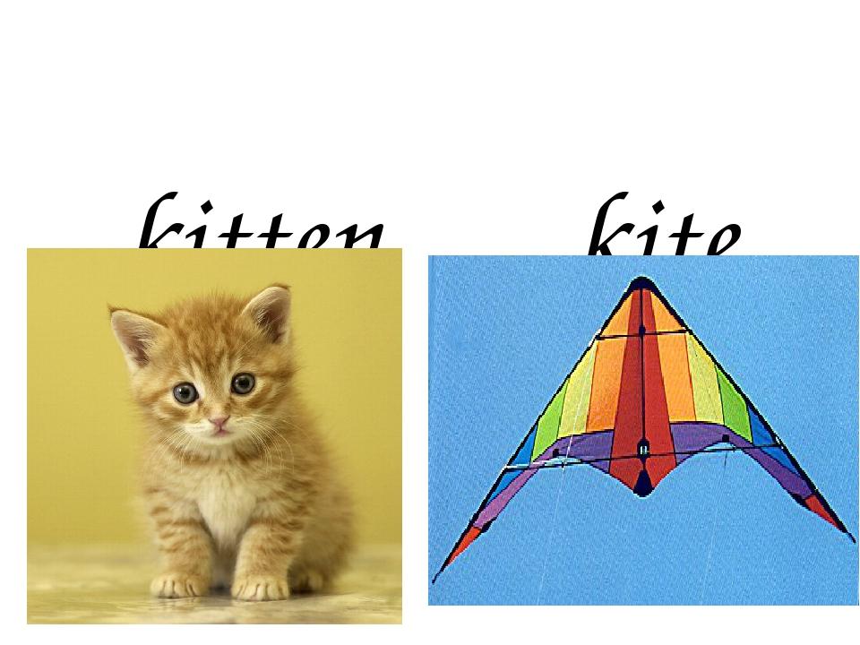 kitten kite