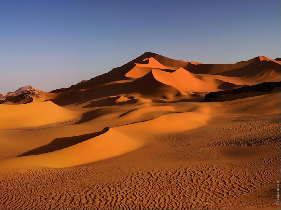 крановщика-то разглядеть картинки природной зоны пустыни меховым