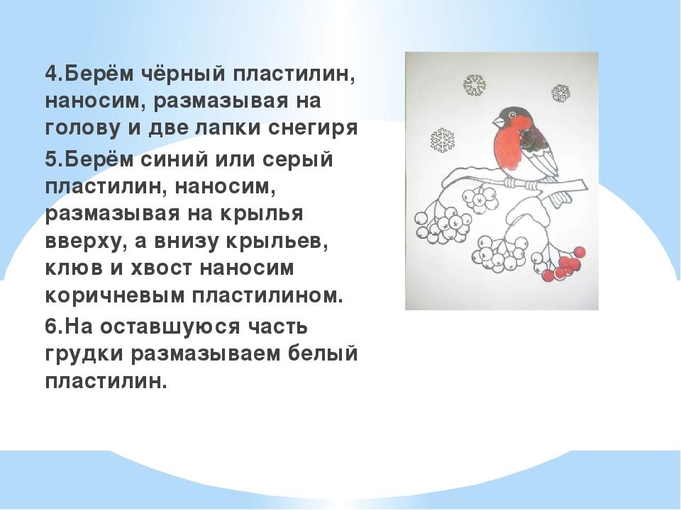 4.Берём чёрный пластилин, наносим, размазывая на голову и две лапки снегиря...