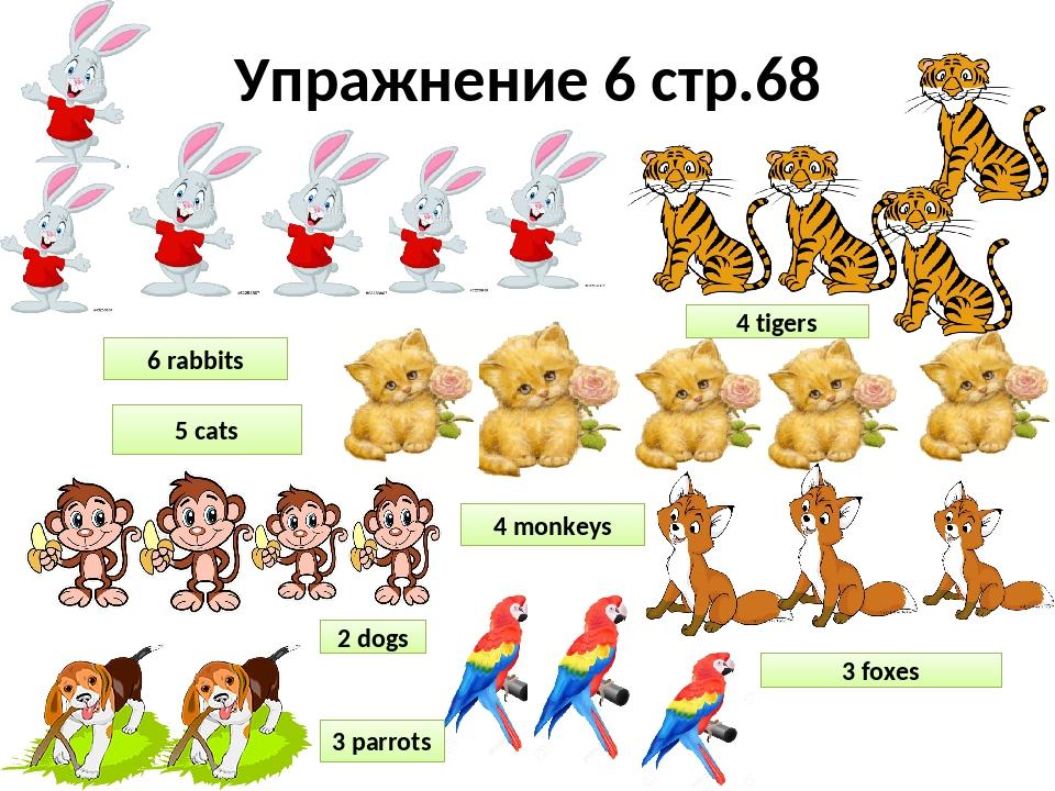 картинки животные множественное число чтобы каждый мог