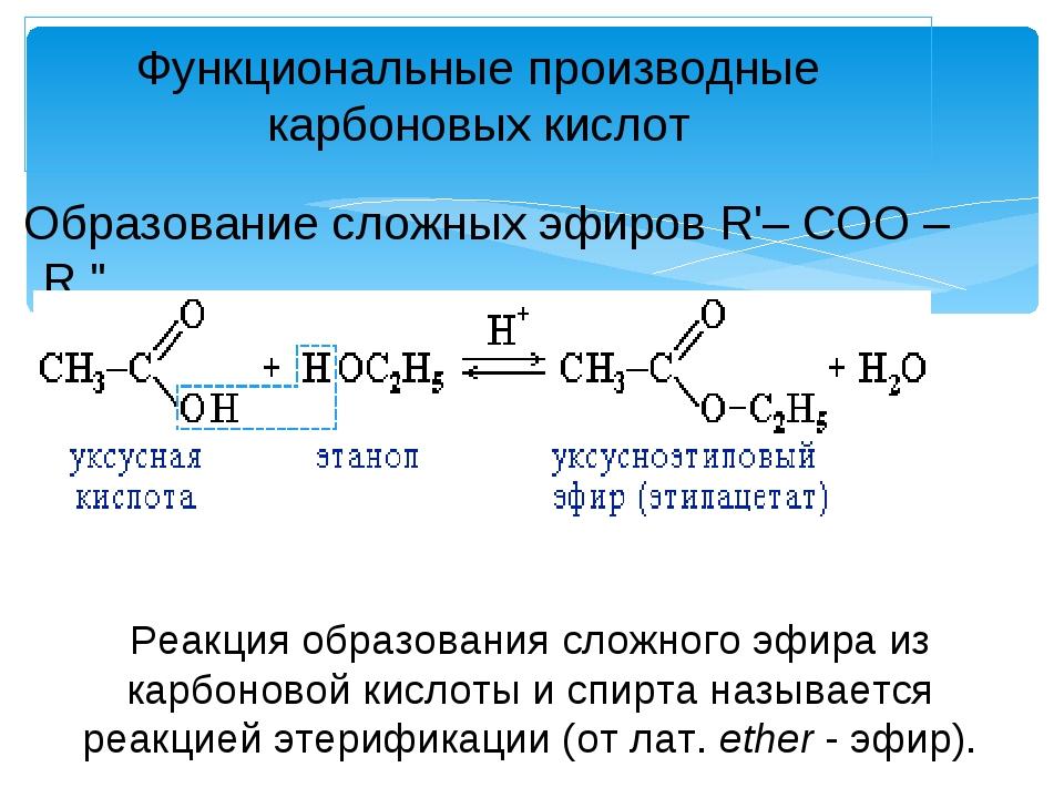 """Образование сложных эфиров R'– COO – R """" Функциональные производные карбонов..."""
