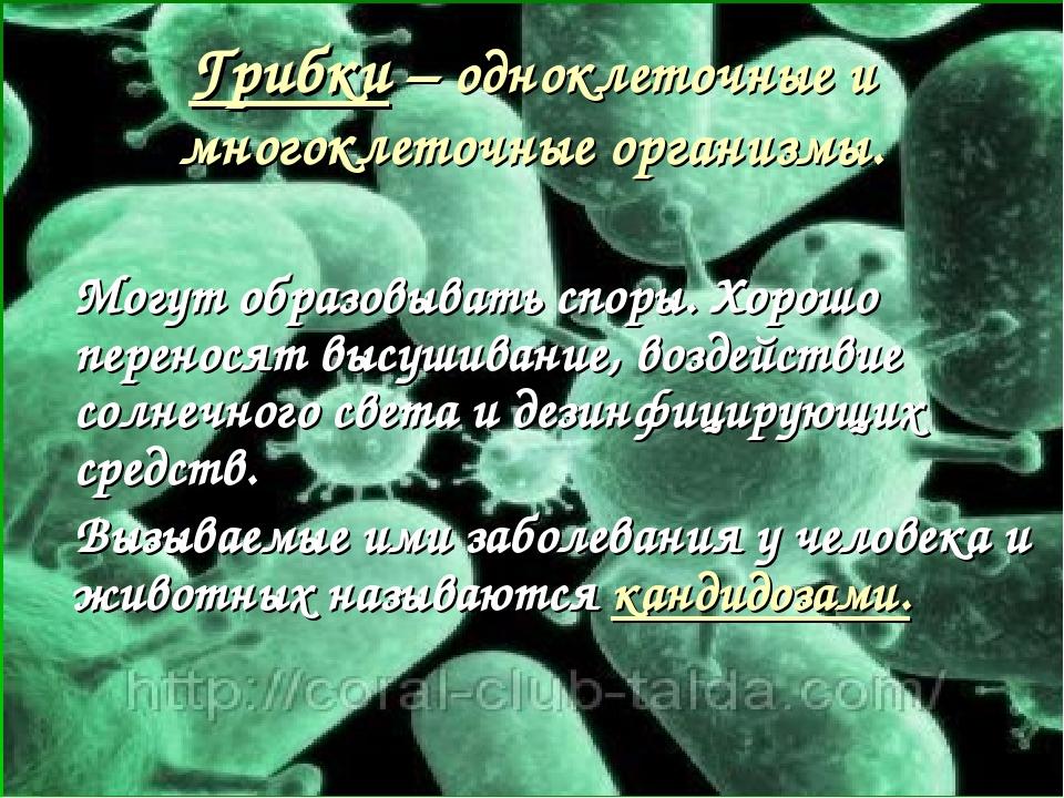 Грибки – одноклеточные и многоклеточные организмы. Могут образовывать споры....