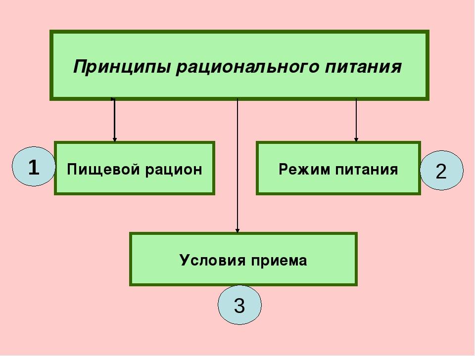 Принципы рационального питания Пищевой рацион Режим питания Условия приема 1...