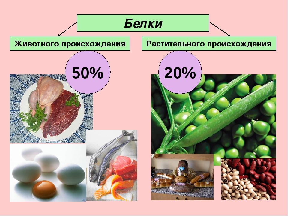 Белки жи жи Животного происхождения Растительного происхождения Белки 50% 20%