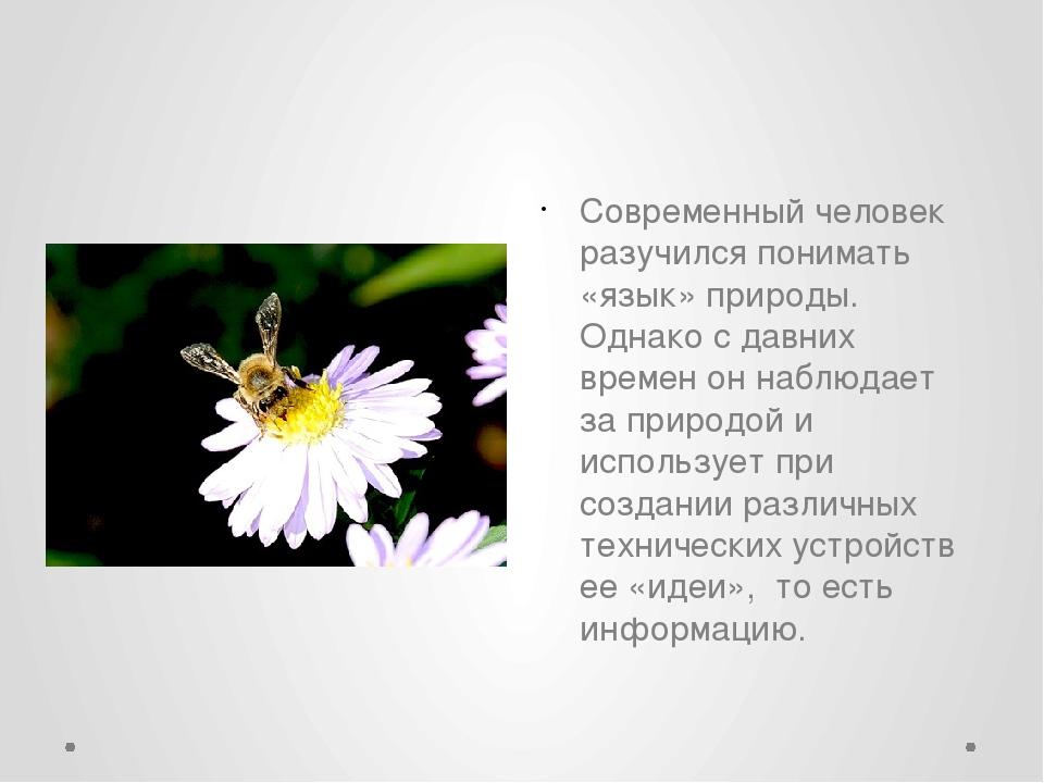 Современный человек разучился понимать «язык» природы. Однако с давних време...