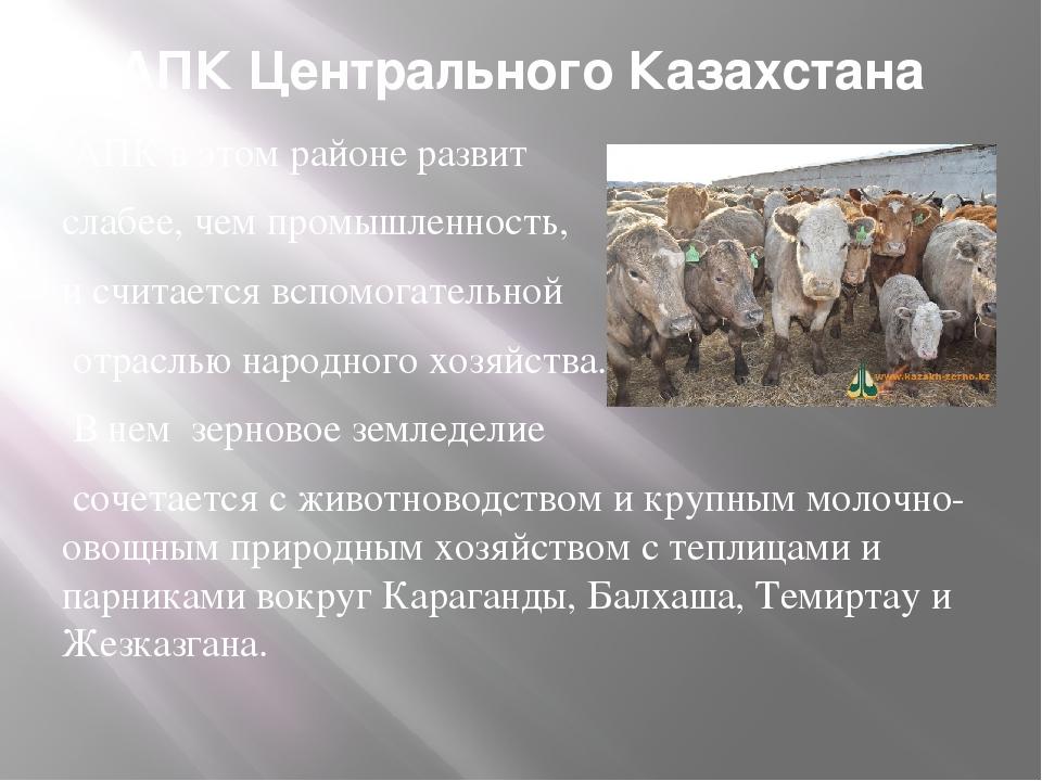 АПК Центрального Казахстана АПК в этом районе развит слабее, чем промышленнос...