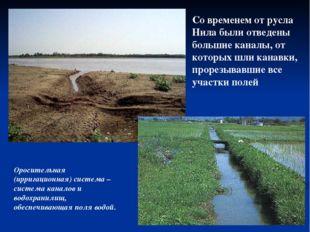 Со временем от русла Нила были отведены большие каналы, от которых шли канавк