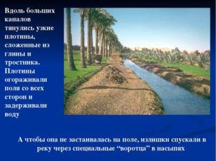 Вдоль больших каналов тянулись узкие плотины, сложенные из глины и тростника.