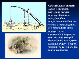 Оросительная система садов и огородов включала особые приспособления – шадуфы
