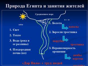 Природа Египта и занятия жителей Средиземное море «+» Свет Тепло Вода (река и