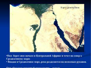 Карта дельты Нила Нил берет свое начало в Центральной Африке и течет на север