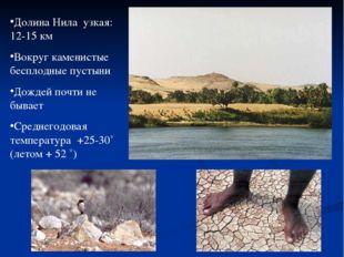 Долина Нила узкая: 12-15 км Вокруг каменистые бесплодные пустыни Дождей почти