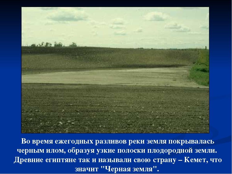 Во время ежегодных разливов реки земля покрывалась черным илом, образуя узкие...