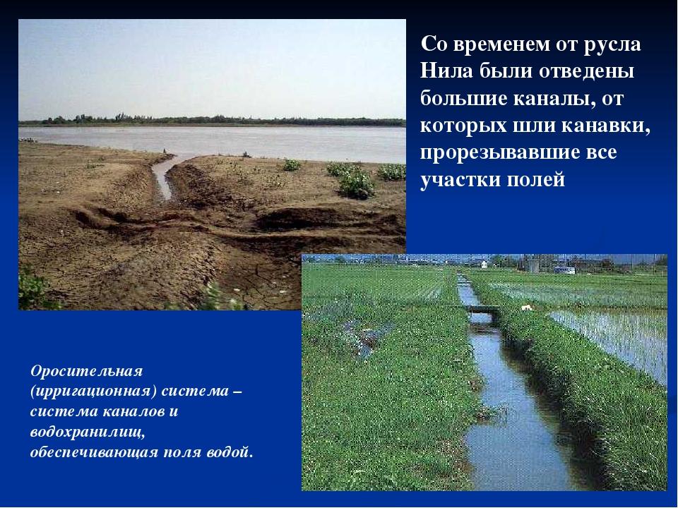 Со временем от русла Нила были отведены большие каналы, от которых шли канавк...