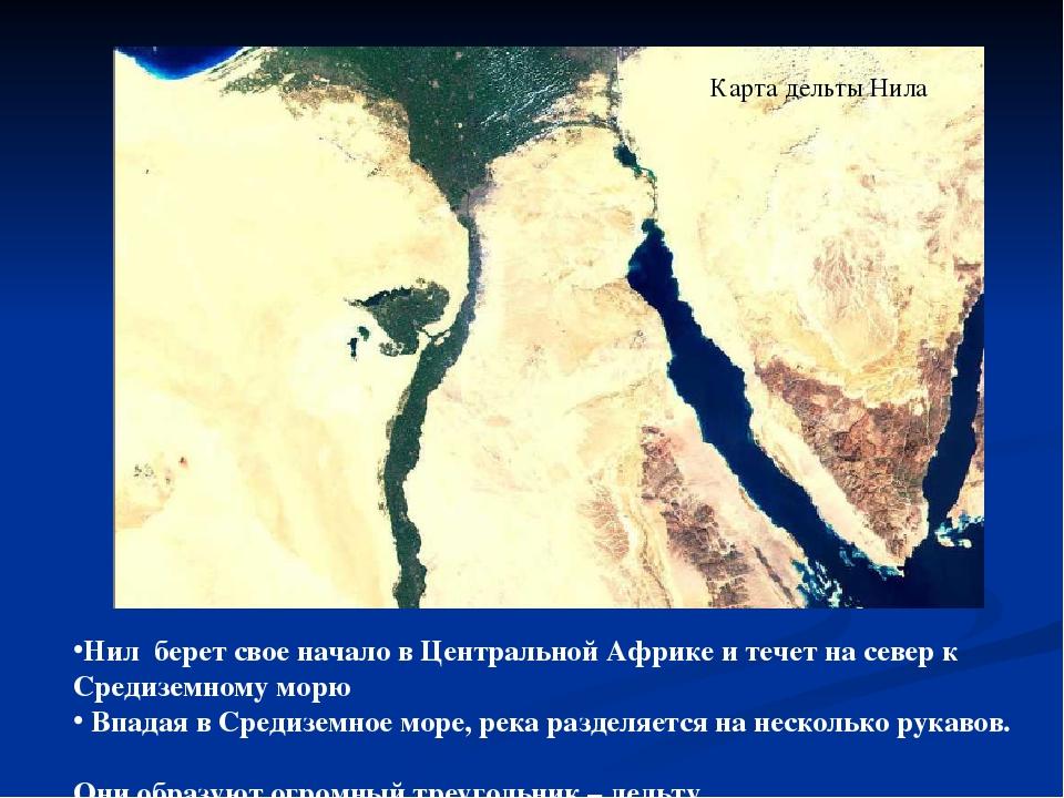 Карта дельты Нила Нил берет свое начало в Центральной Африке и течет на север...
