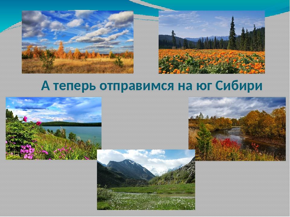 А теперь отправимся на юг Сибири