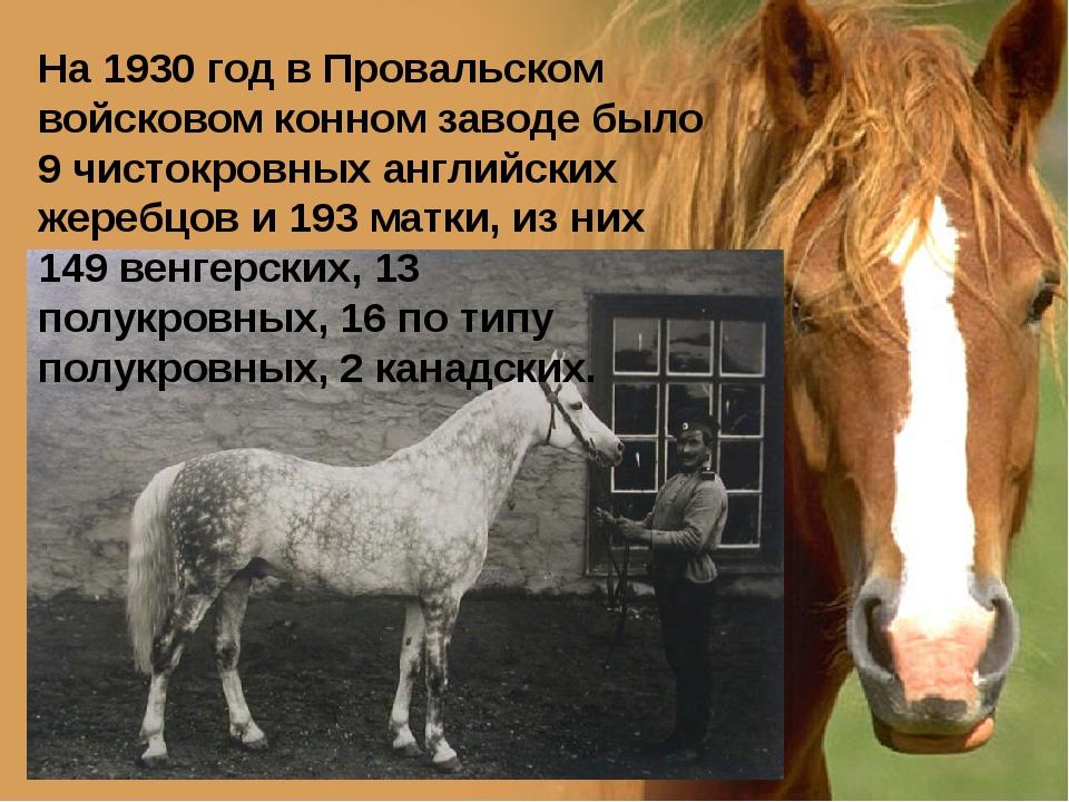 На 1930 год в Провальском войсковом конном заводе было 9 чистокровных английс...