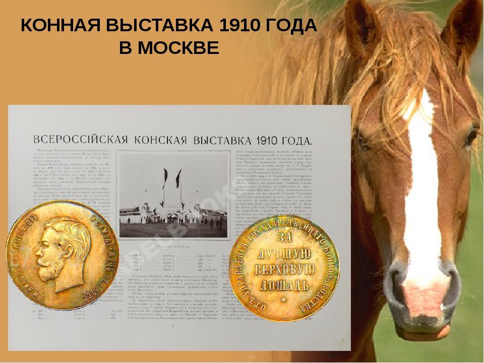 КОННАЯ ВЫСТАВКА 1910 ГОДА В МОСКВЕ www.PresentationPro.com